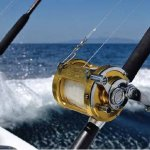 Deland Fishing Charters Offshore Fishing