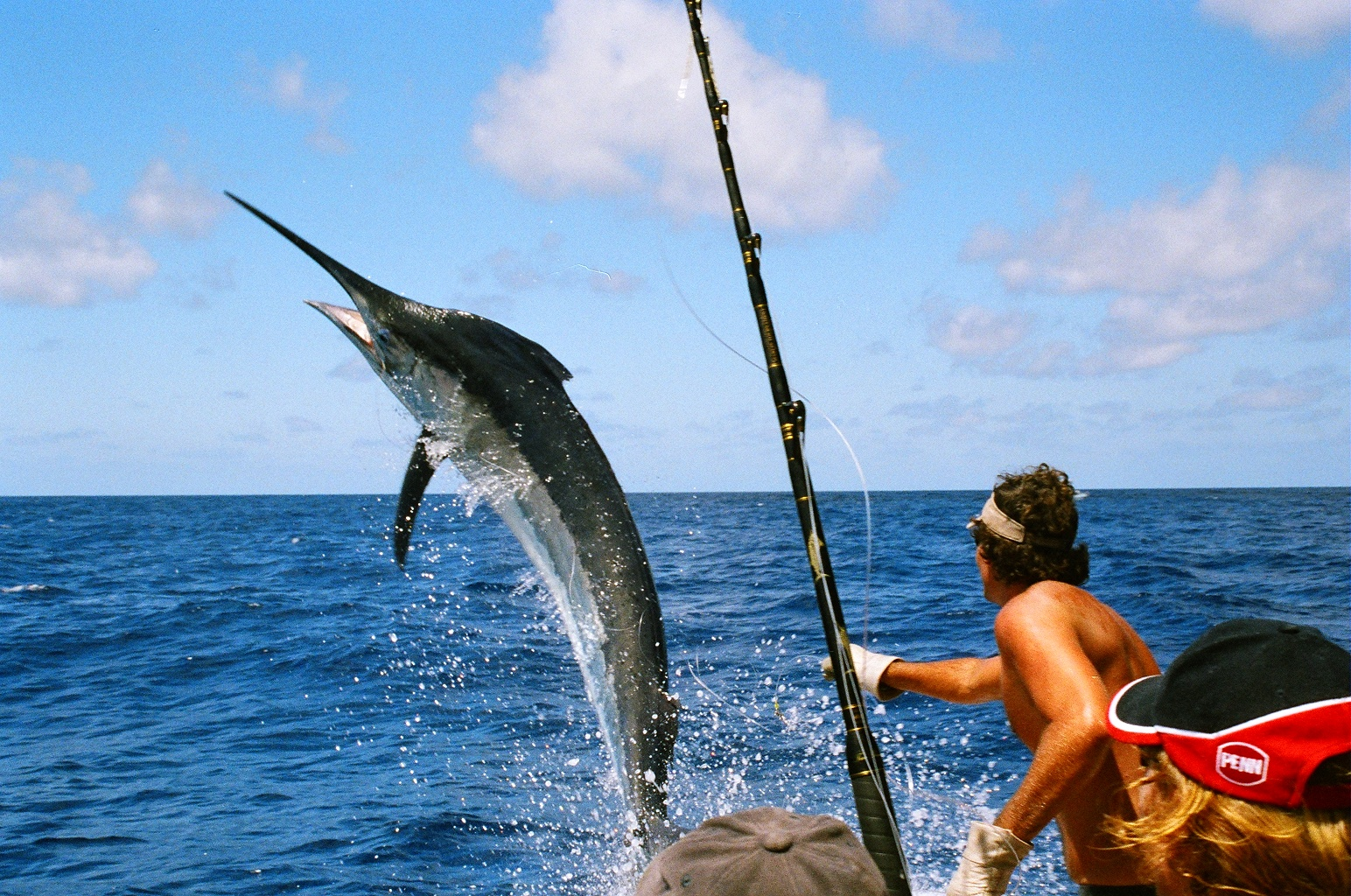 Tampa fishing charters and guides offshore fishing tampa for Deep sea fishing trips