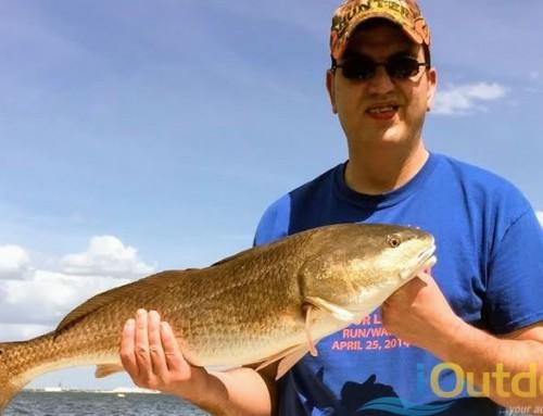 Inshore Fishing Tampa Florida