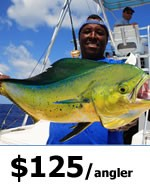 Miami Offshore Fishing charters