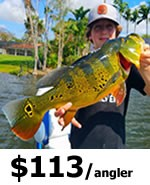 Miami Peacock Bass Fishing Charters