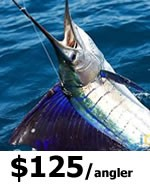 Miami Sport Fishing