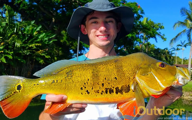 Aerojet Canal System Fishing Charters