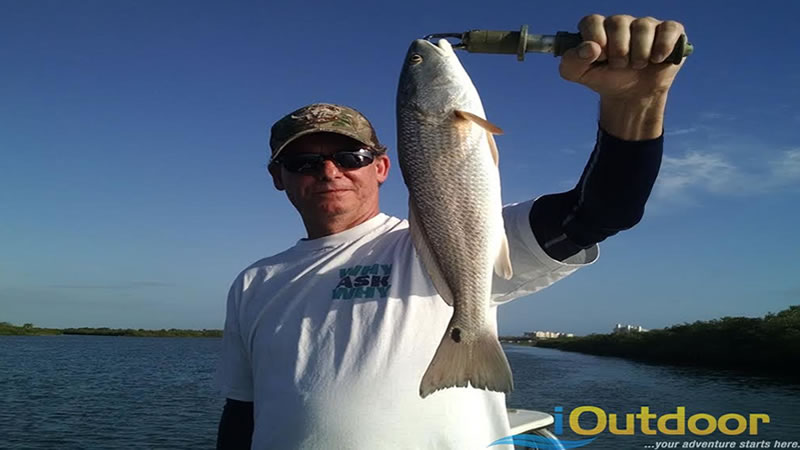Hernando Beach Inshore Fishing