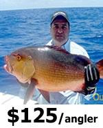 Hernando Beach Offshore Fishing Charters