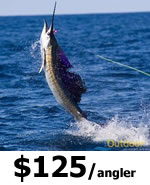 Daytona Beach Offshore Fishing charters