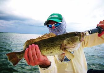 hernando beach offshore fishing