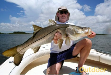 Air boats everglades outdoor adventures for fishing for Fishing for snook